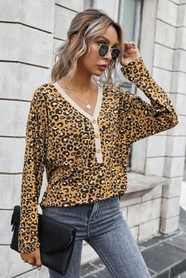 Elegant Leopard V Neck Top