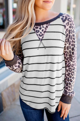 Striped Leopard Raglan Top