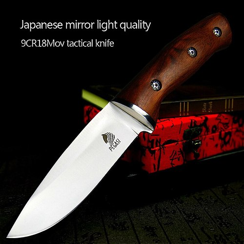 PEGASI Japanese mirror light high quality 9CR18Mov  tactical knife outdoor hunting knife outdoor defensive sharp camping knife