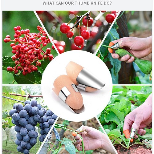 2PC  Index Finger Cover Harvesting Plant Tools Pruning Stainless Steel Picking Separator Portable Vegetable Thumb Cutter Fast Garden