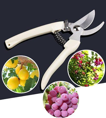 Stainless Steel Garden Scissors Grafting Tool Fruit Tree Pruning Shears Bonsai Pruners Garden Shears Gardening Secateurs Scissor