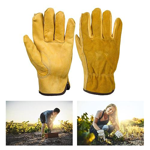 Hot Sale Garden Work Gloves Cow Leather Gardening Comfortable and Durable Cut-resistant Elastic Wrist Design Safe Mitten Tool