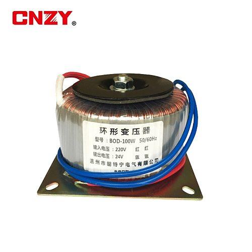 Peak power 300w toroidal transformer toroidal power amplifier transformer 220V/380V to 12V/24V/36V/48/110V mask machine OEM 100V