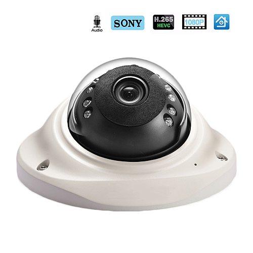 Hamrolte IP Camera H.265 SONY IMX323 UltraLow Illumination1080P Vandal-proof Dome Camera Audio Record Motion Detection ONVIF
