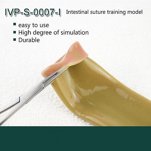 Intestinal Suture Training Model Intestinal Suture Model Bracket Clip Laparoscopic Surgery Training Medical Practice Aids