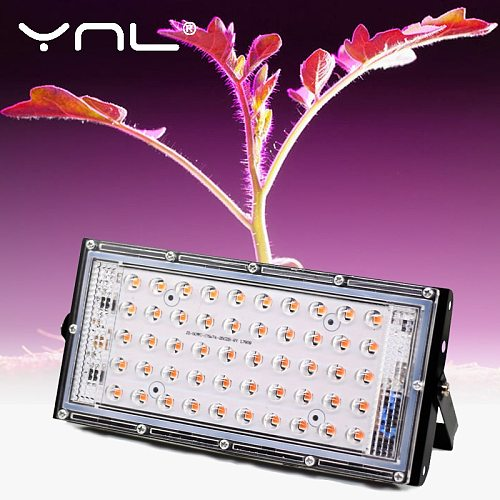 LED Grow Light Full Spectrum 50W AC 220V Phyto Lamp For Plants Tent Flower Seeding Lamp Indoor Outdoor Led Floodlight Grow Box