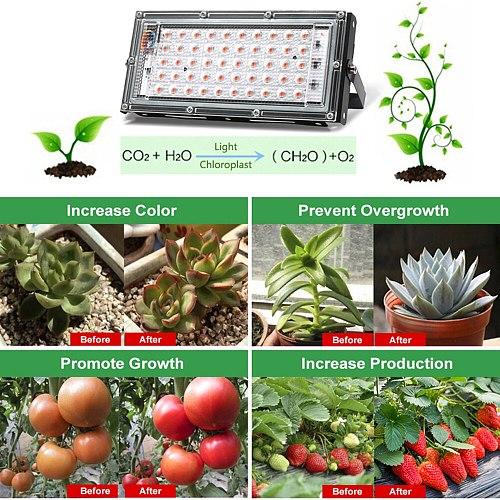 LED Grow Light PhytoLamp For Phyto Plants Tent Flower Seeding 50W AC 220V Full Spectrum Range Lamp Outdoor Floodlight Grow Box