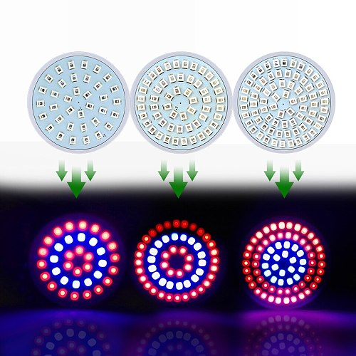 Full Spectrum 220V LED Plant Grow Light 36 54 72Leds Fitolampy Phyto Lamp For Indoor Plants Flowers Hydroponics Grow Tent Box
