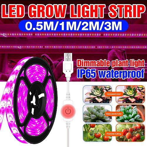 USB Grow Light Strip Full Spectrum LED Grow Lamp 0.5m 1m 2m 3m 2835 SMD 5V LED Phyto Led Indoor Plant Seeds Flowers Greenhouses