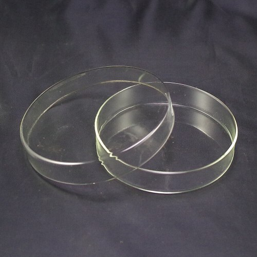 60mm Clear Glass Petri Dishes With lids Microorganisms Cell Clear Sterile Chemical Instrument Drop Shipping Petri Dishes