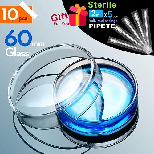 10 pcs 60mm Glass Petri Dish Bacterial Culture Dish Borosilicate Glass Chemistry Laboratory Equipment by ks-tek