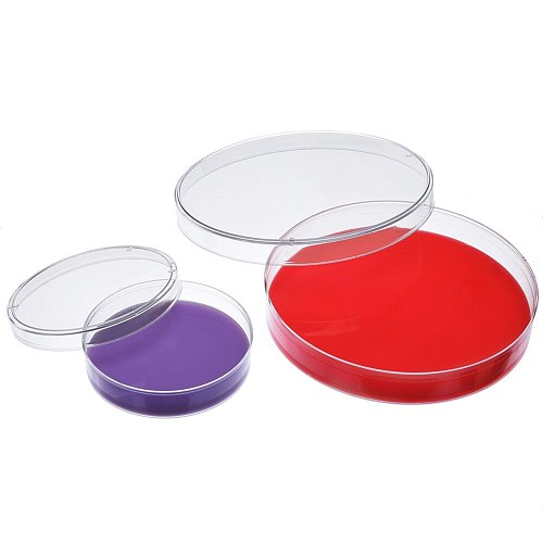 New Plastic Petri Dish Sterile Dishes with Lid, 100 mm and 60 mm, 20 Pcs