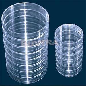 Affordable 10Pcs Sterile Petri Dishes w/Lids for Lab Plate Bacterial Yeast 55mm x 15mm