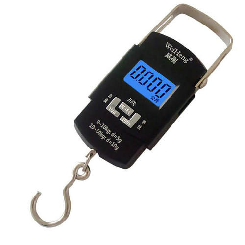 50KG 10g Electronic Portable Digital Scale Hanging Hook Weight scale Balance scales Steelyard