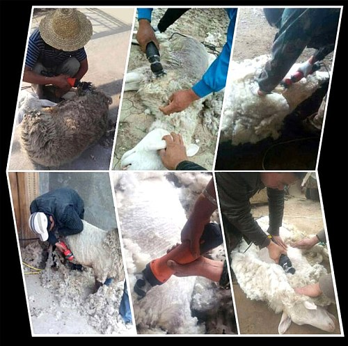 750W 220V Electric Sheep Shearing Machines Supplies Clipper Sheep Goats Alpaca Shears Adjustment Pusher