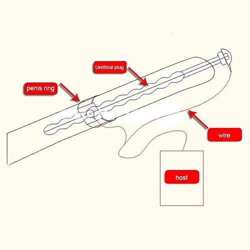 Electro Shock Pulse Anal Plug Vibrator Electric Shock Urethral Catheter Stimulator Anal Plug Sounding Horse Eye Rod Man Sex Toys