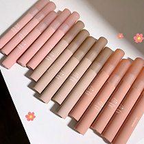Chestnut Velvet Matte Liquid Lipstick Waterproof Lip gloss Long Lasting Nude Lipstick Women Red Lip Tint Beauty Cosmetics