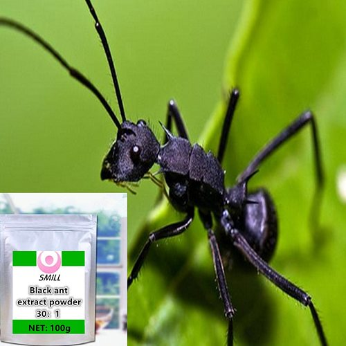 100-1000g High quality, no additions Black Ant Extract powder /hei ma yi/ Free shipping