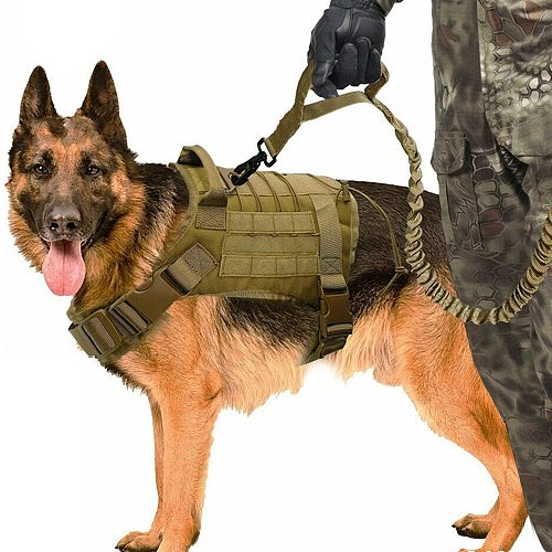 Tactical Dog Vest Breathable Military Dog Clothes Harness Adjustable Size Training Hunting Molle Dog Vest Harness with Leash
