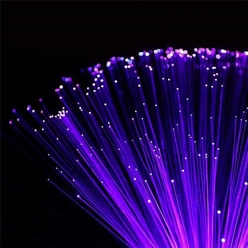 Multicolor LED Fiber Optic Lamp Light Interior Decoration Centerpiece Holiday Wedding Lamp LED Night Light Lamp