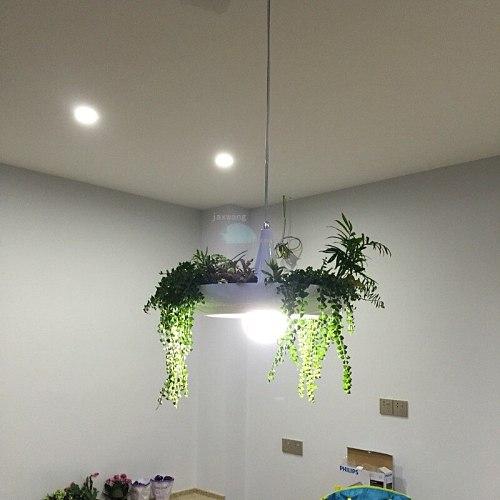 JW Sky Garden Led Pendant Lamp Lights Hanging Lamp Hanglamp Light Fixture Modern Hanging Ceiling Lamps Chandelier Lighting FCU