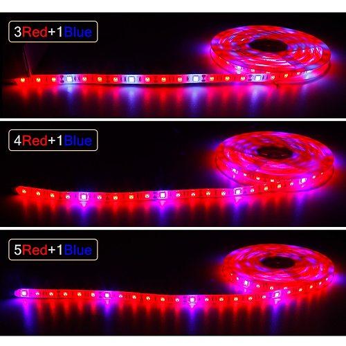 12V Full Spectrum Led Grow Light Strip Red +Blue Growing Lamp Waterproof IP65/IP20 For Hydroponics Flowers Plants Vegetables