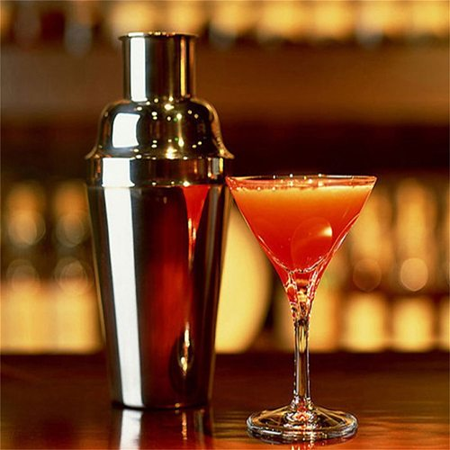 750ml Cocktail Shaker Stainless Steel Drink Shakers Rustproof Martini Mixer Shaker