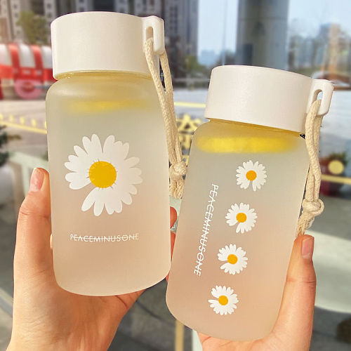 Small Daisy Transparent Plastic Water Bottles Free Creative Frosted Water Bottle With Portable Rope Travel Tea Cup 500ml