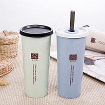 Travel Cup Cola Coffee Drinking Tools Kitchen Accessories Double Cover Wheat Straw Water Cup Eco-Friendly Portable Water Bottle