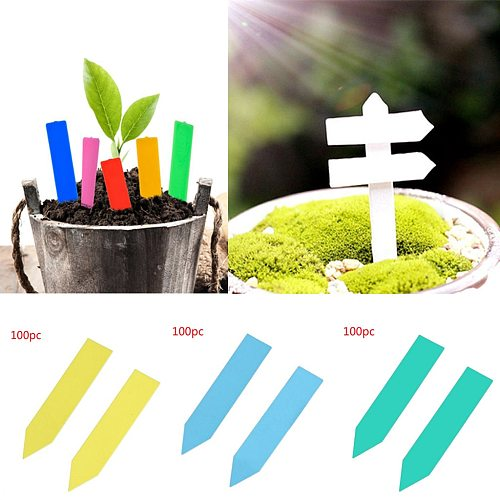 100Pcs Stake-Tags Labels Plant-Seed Plastic Succulent Seed Labels Pot Marker Nursery Garden Stake Tagsgardening Supplies