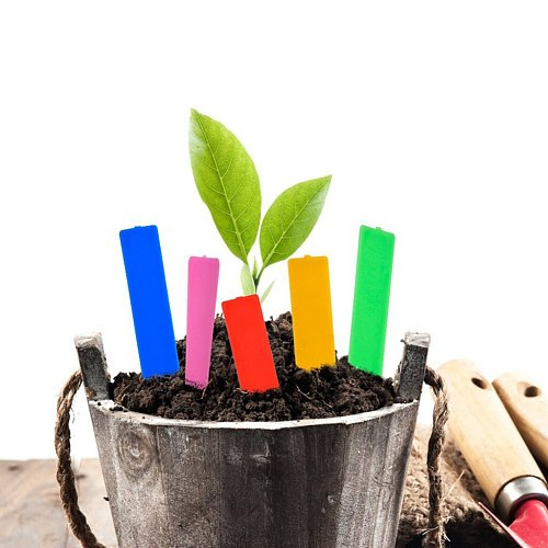 100 Pcs Plastic Plant Seed Labels Pot Marker Nursery Garden Stake Tags Flower Label 5x1cm Plant Name Marking Garden Supplies