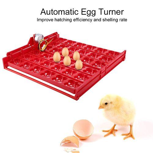 36 Eggs/144 Bird Eggs Incubator Hatcher Automatic Egg Turning Tray Tool 220V and 110V motor