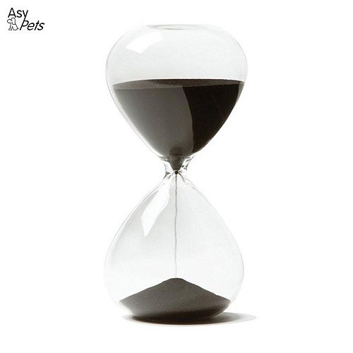 AsyPets Creative Sand Clock Hourglass Timer Gifts as Delicate Home Decorations-25