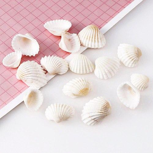 30g About 20pc Aquarium Landscape Natural Seashells Decorations Scallop Shells Jewelry Crafts Wall  Decor Ornament Conch