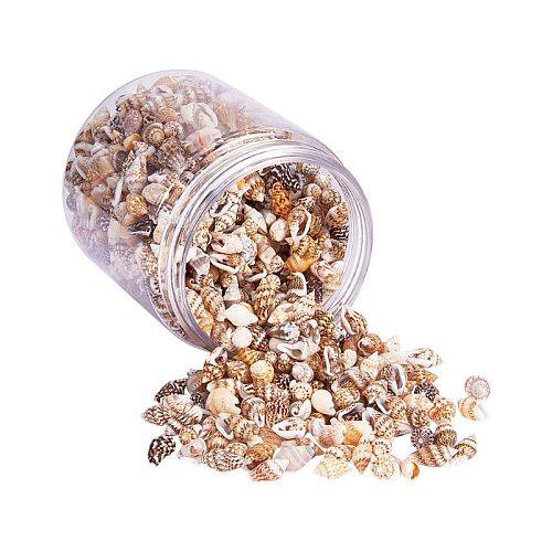 Over 1300 Pcs Mini Natural Beige Shell Conch Beads Seaside Candle Jewelry Making Cowry Cowrie Tribal Jewelery Craft Accessories