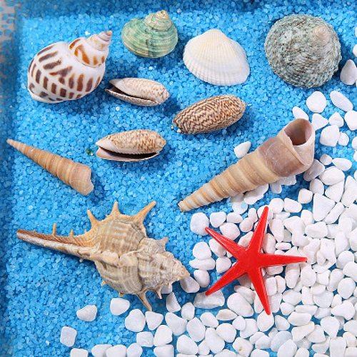 Mixed Ocean Sea shells Wedding Decor Beach Theme Party, Seashells Home Decorations, Fish Tank,Candle Making sea star