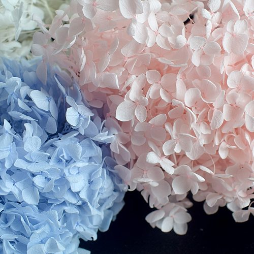 5g/lot Hydrangea Real Dried Flower Dry Plants Aromatherapy Candle Epoxy Pendant Necklace Jewelry Making Craft DIY Accessories