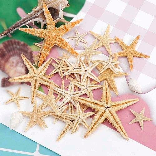 100pcs  1-2cm Natural Starfish Shell Beach Crafts Natural Starfish DIY Beach Wedding Decoration Crafts Home Decoration