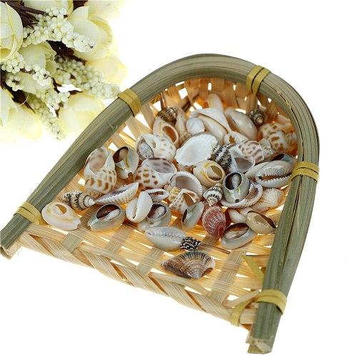 1bag(30g) Aquarium Fish Tank Small Conch Natural Sea Shell Landscape Home Decor Random Style DIY Craft