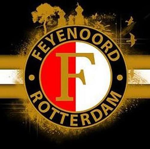 5D DIY Diamond Embroidery Feyenoord Logo Diamond Painting Cross Stitch Rhinestone Mosaic Decoration Gift