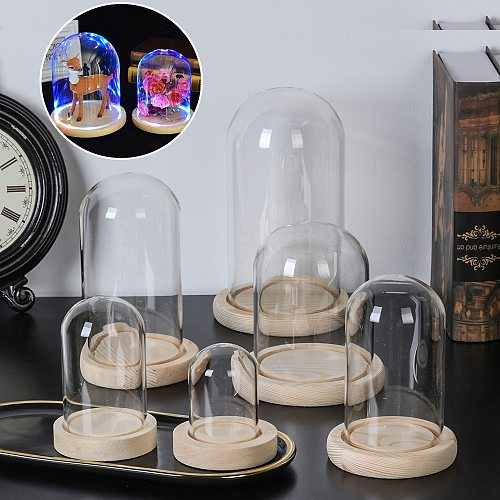 Terrarium Bottle with Wooden Base Acrylic Dust Cover Glass Cloche Jar Display Stand Cover Display Box Immortal Flower Box