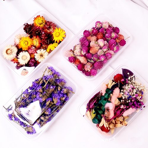1 Box Real Dried Flower Dry Plants For Aromatherapy Candle Epoxy Resin Pendant Candle Making DIY Candle Aromatherapy Accessories