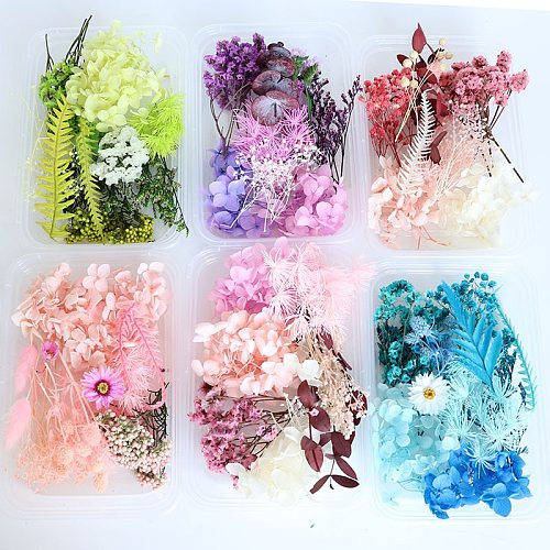 1 Box Colorful Real Dried Flower Plant For Aromatherapy Candle Epoxy Resin Pendant Necklace Jewelry Making Craft DIY Accessories