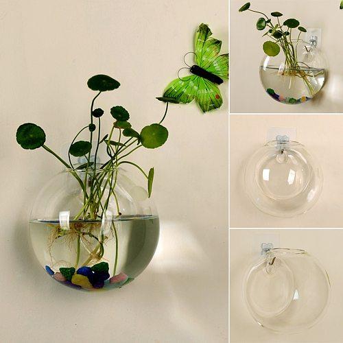 Transparent Glass Vase Wall Hanging Hydroponic Terrarium Fish Tanks Potted Plant Flower pot Dia 8/10CM