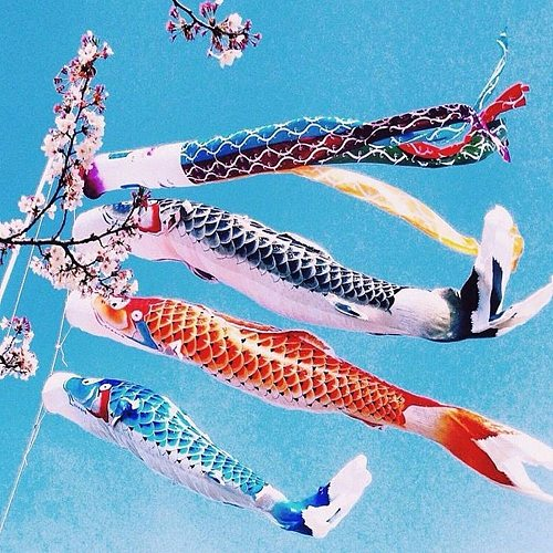 40/70/100 CM Japan Style Koinobori Carp Wind Sock Flag Wind Chimes Hanging Decorations Yard Koinobori Hanging Decor