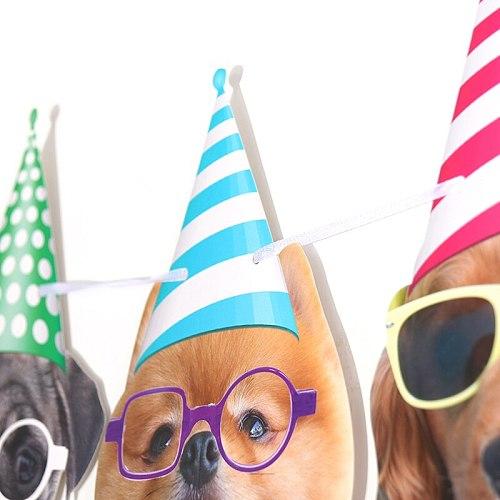 New Dog Birthday Party Flag Pulling Dog Birthday Party Flag Pulling Family Decoration Accessories