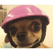 Pet Funny Cool Motorcycles Helmet Hat Adjustable Dog Protective Hat Sun Rain Protection Hats Doggie Costumes Accessories