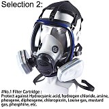 Full Face Paint Gas Mask 6800 Respirator Chemical Mask with Carbon Filter Cartridge Full Protective Spray Welding Industry