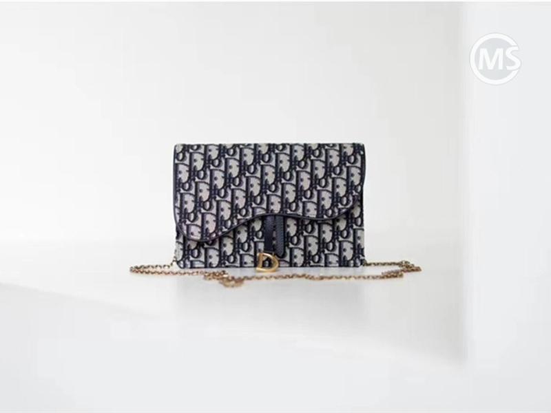 New Blue Dior Oblique Hand bag