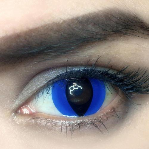 Blue Cat Yearly Colored Contacts